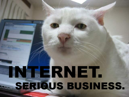 http://ramblingrhodes.mu.nu/archives/internet-serious-business-cat-thumb.jpg