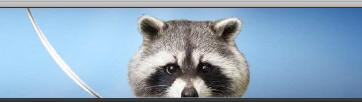 raccoonsword.JPG