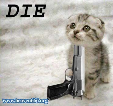 suicidalkitty.jpg